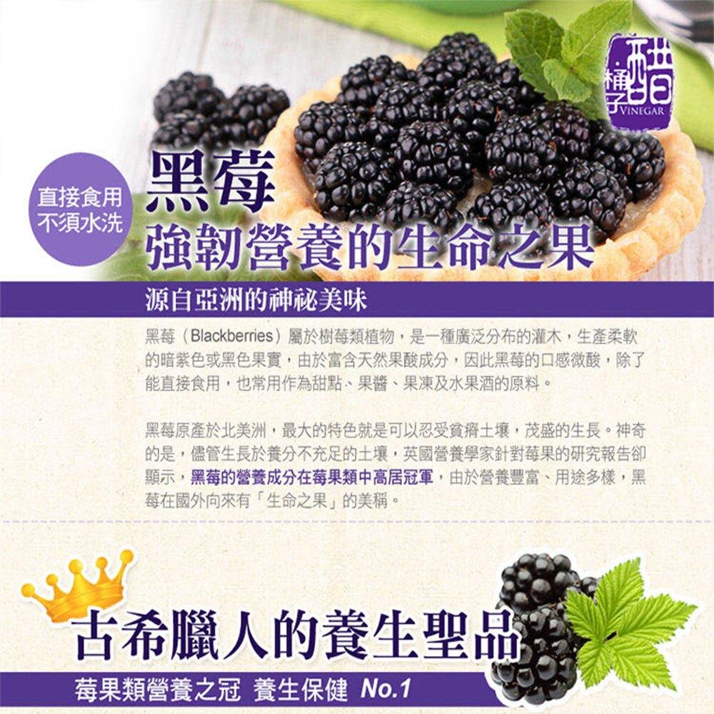 【幸美生技】免運 4公斤花青雙黑莓果特惠組(黑醋栗2公斤+黑莓2公斤)