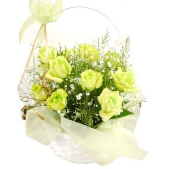 エメラルドのバラとカスミソウのバスケットアレンジメント グリーンラグーン パール 18本(生花)