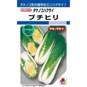 【種子】タケノコハクサイ プチヒリ タキイ種苗のタネ