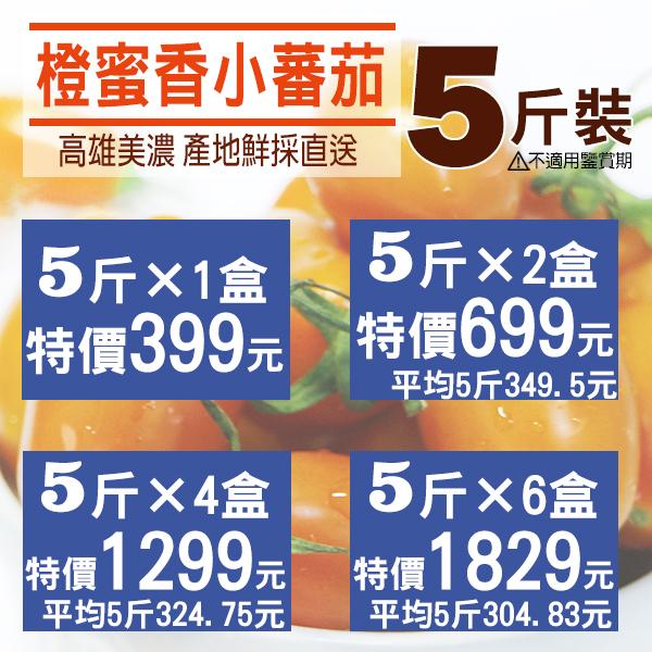 高雄美濃.鮮採直送❤橙蜜香小蕃茄5斤裝(含箱重).免預購 平日出貨/免運〔網購家〕