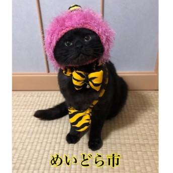 節分モコモコ蝶ネクタイ、猫ちゃんの首輪