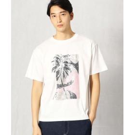COMME CA MEN/コムサ・メン パームツリー柄プリントTシャツ ホワイト L