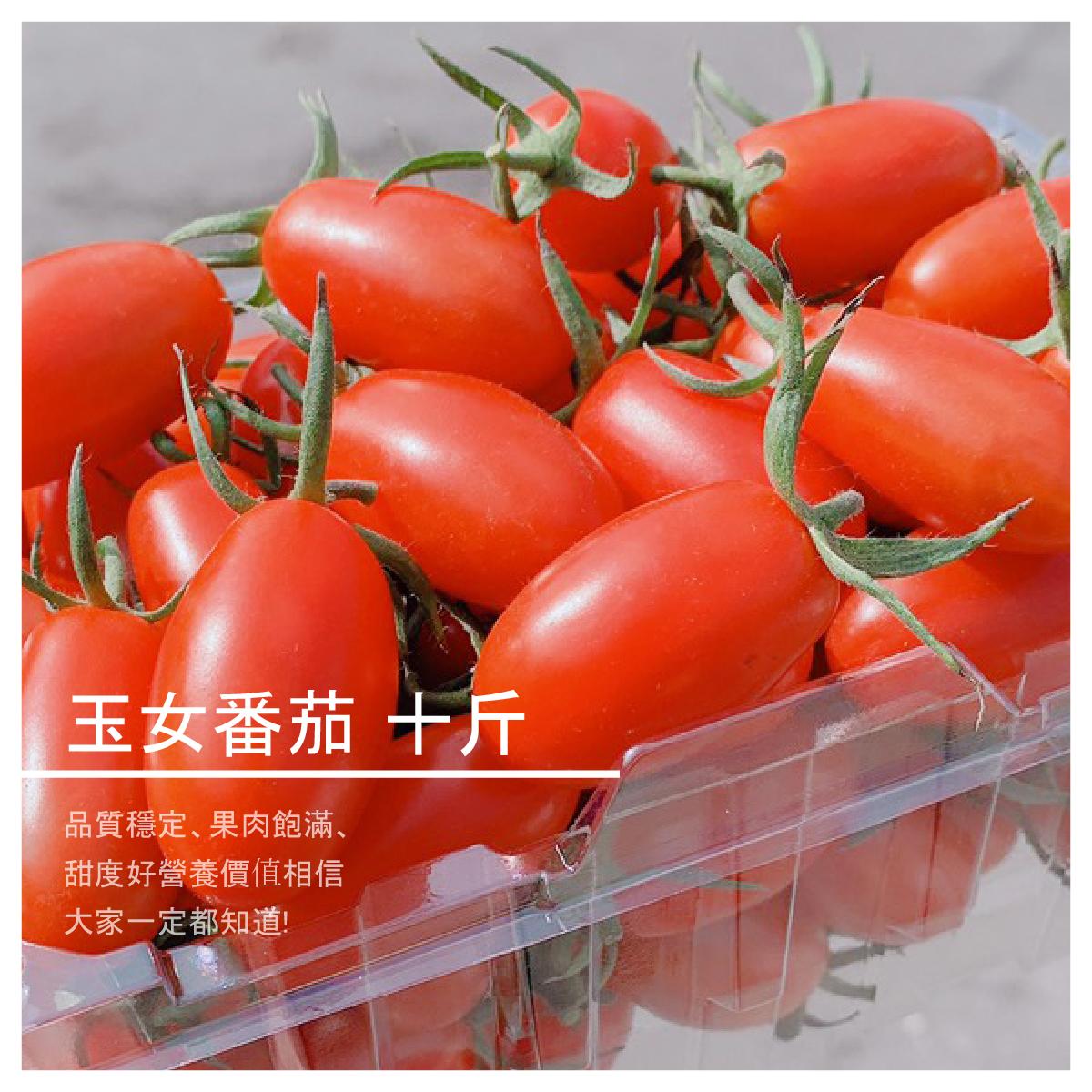【結善園小番茄】玉女番茄 十斤
