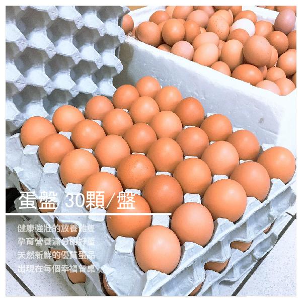 【瀰香雞 藻紅蛋】藻紅蛋 蛋盤30顆/盤