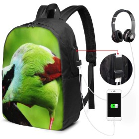 バックパック USB ポート搭載 17インチPC対応 バード69 大容量ビジネスリュック 通勤 通学 出張 旅行 メンズ レディース
