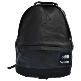 SUPREME(シュプリーム)17AW×THE NORTH FACE ザノースフェイス Leather Day Pack レザーバックパック