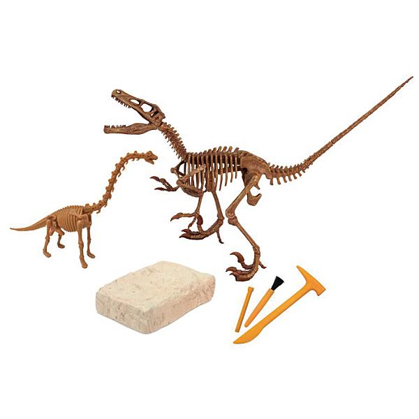 Dr.Steve Hunters 恐龍挖掘玩具-迅猛龍