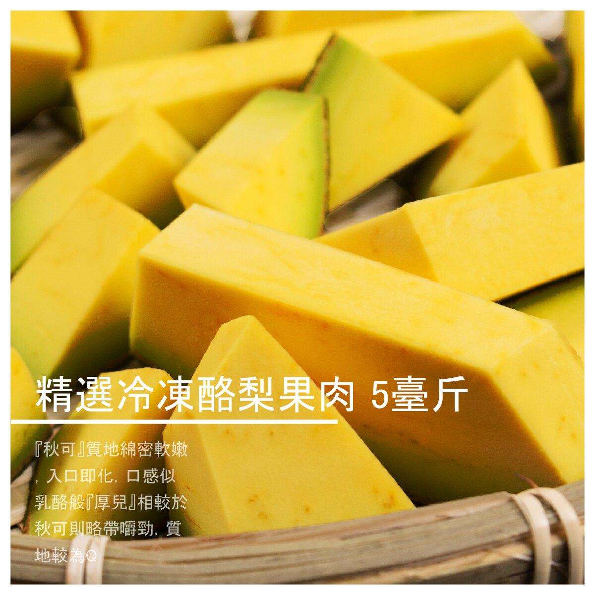 【正宗酪梨農場】精選冷凍酪梨果肉 5臺斤