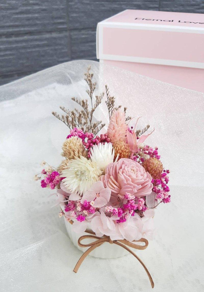 熊愛你不凋玫瑰香氛植栽  乾燥花/情人節禮物/擺飾/擴香