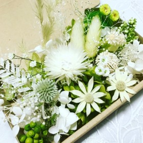 Greenの香り*ハーバリウム 花材ドライフラワー 花材詰め合わせセット