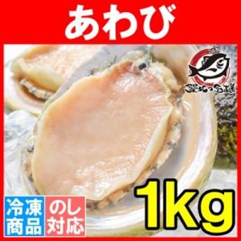 あわび Lサイズ 1kg 1箱12個入り 殻つきお刺身用アワビ 高級料亭でも使用する新鮮な殻付きあわび!【あわび アワビ 鮑 お造り バター焼き