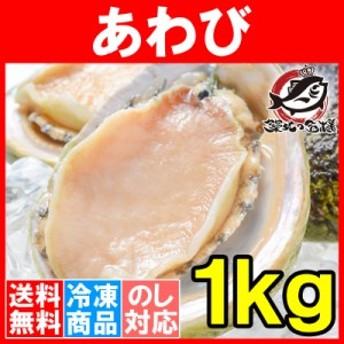 送料無料 あわび Lサイズ 1kg 1箱12個入り 殻つきお刺身用アワビ 高級料亭でも使用する新鮮な殻付きあわび!【あわび アワビ 鮑 お造り