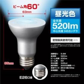 STYLED RL-R6E26D1(昼光色) LED電球 レフ電球型 E26口金 60W形相当 520lm
