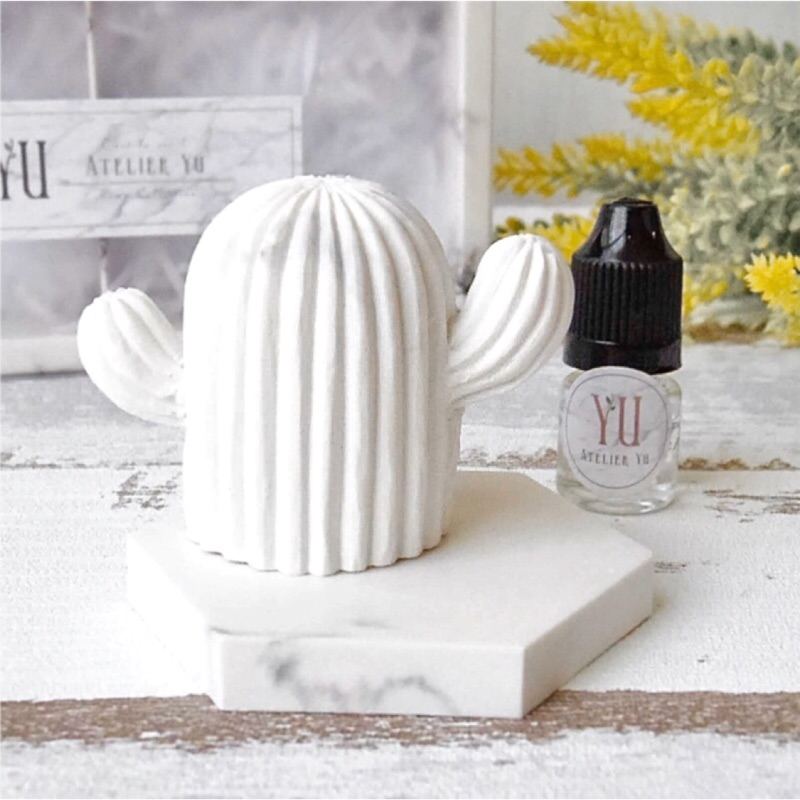 Atelier YU 交換禮物 手工精緻大理石紋香磚禮盒 擴香石 香磚 仙人掌擺飾 附香氛5ml