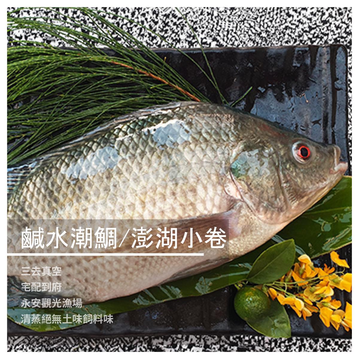 【永安觀光漁場】鹹水潮鯛/澎湖小卷/三去真空宅配到府