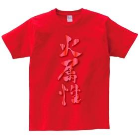 DRAKEA 火属性 書道家 筆文字 属性 レッド メタリック 半袖 Tシャツ 通学 運動 日常用