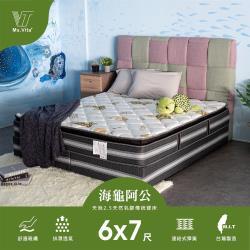 維塔小姐Ms.Vita    海龜阿公-環保天絲2.5CM天然乳膠3.0傳統硬床-雙人特大6*7尺