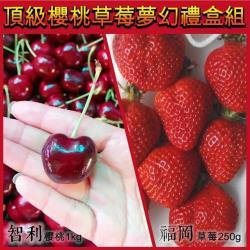 果物樂園-夢幻禮盒-空運櫻桃1kg+日本草莓250g