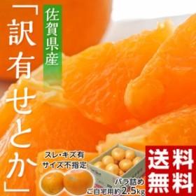 柑橘 佐賀県産 JAからつ せとか 訳あり品 約2.5kg  送料無料 (スレ・傷有・サイズ不指定) ※常温