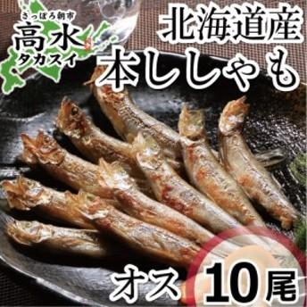 本ししゃもオス10尾 北海道日高産の本物のシシャモです 在庫処分 big_dr