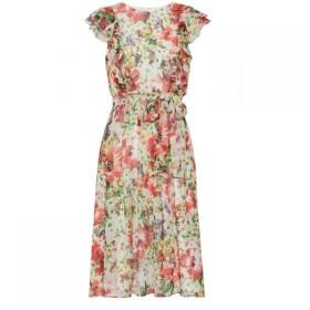 ジーナ バッコーニ Gina Bacconi レディース ワンピース ワンピース・ドレス Rozella Chiffon Dress Multi-Coloured