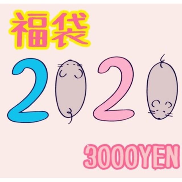 3000円 2020年 袋