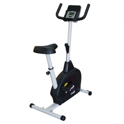 【 X-BIKE 晨昌】立式磁控健身車_小綿羊 (可放平板.手機)60200
