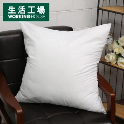 【年中慶↗全館8折起-生活工場】枕心700g(6060)