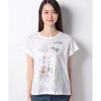 シスレー コットンプリント袖ダブル半袖Tシャツ・カットソー レディース ホワイト S(国内M相当) 【SISLEY】