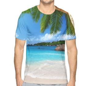 熱帯のビーチの海岸のヤシの木の葉 XXL Tシャツ トップス クルーネック みんな スポーツシャツ 半袖 シンプル 個性 無地 おしゃれ アウトドア 春夏 ハイクオリティー ライトウェイト