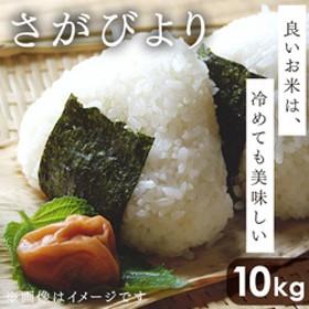 【9年連続特A】 さがびより 精米 令和元年産 10kg(5kg×2) 佐賀県産 お米 米 おこめ コメ 食品 68600000 01
