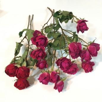 薔薇 ドライフラワー 2種類