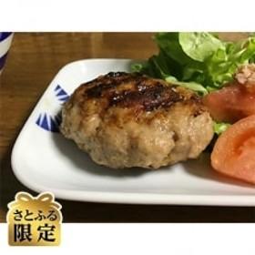 【さとふる限定】諫早平野の米で育てた諫美豚(かんびとん)ハンバーグ2.1kg
