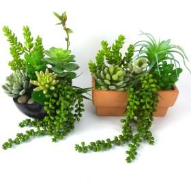 6PCS /セットクラフト盆栽鉢植えシミュレーション多肉植物ウェディング人工植物ガーデンホームベッドルーム葉DIY風景盛り合わせ:中国
