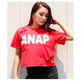【ANAP】ANAPロゴダメージクロップドTシャツ