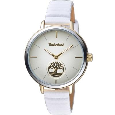 Timberland 天柏嵐 小秒針手錶 40mm TBL.15992JYGS/13