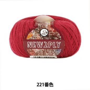 秋冬毛糸 『NEW 2PLY(ニューツープライ) 221番色』 Puppy パピー