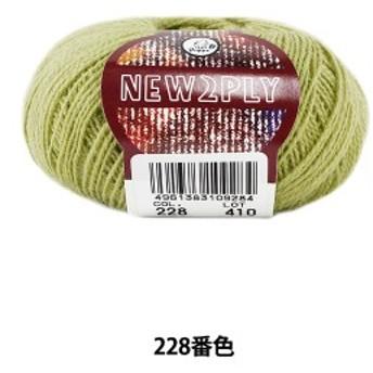 秋冬毛糸 『NEW 2PLY(ニューツープライ) 228番色』 Puppy パピー