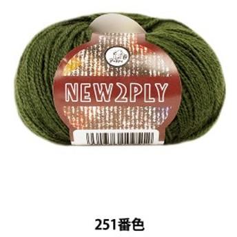 秋冬毛糸 『NEW 2PLY(ニューツープライ) 251番色』 Puppy パピー