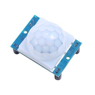 HC-SR501 人體紅外感應模組 熱釋電 紅外感測器 進口探頭藍板新款 W1035