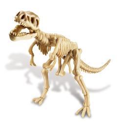 4M科學考古Tyrannosaurus Rex Skeleton挖掘暴龍00-03221霸王龍化石骨骼兒童教育用《榮獲澳大利亞獨立玩具專家-銀牌獎》