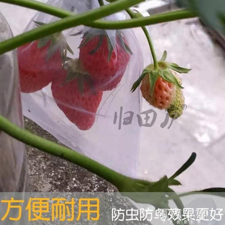 防鳥網 歸田廬葡萄火龍果草莓枇杷西紅柿無花果套袋防鳥袋子水果網袋