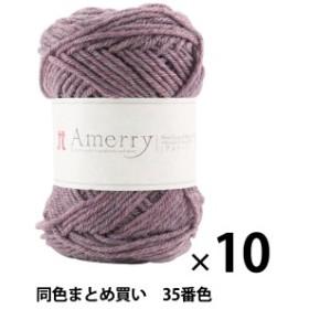 【10玉セット】秋冬毛糸 『Amerry(アメリー) 35番色』 Hamanaka ハマナカ【まとめ買い・大口】