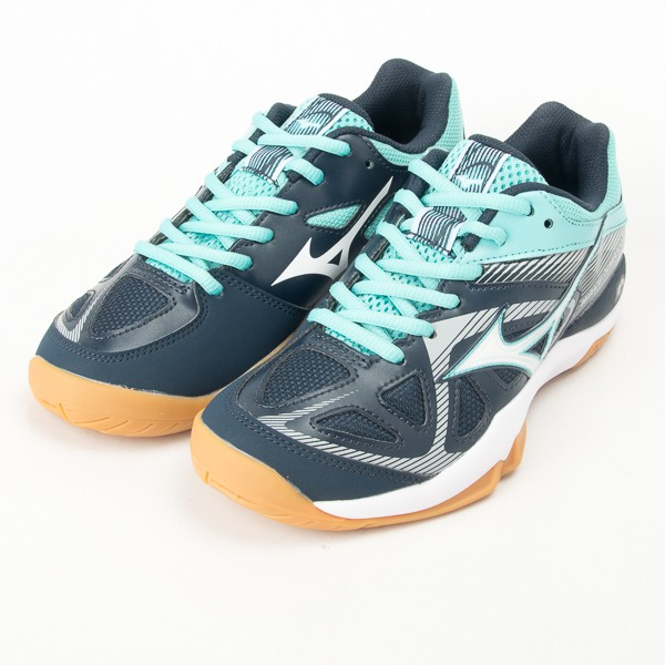 Mizuno WAVE SMASH 5 美津濃 羽球鞋-藍/丈青 71GA196001 現貨