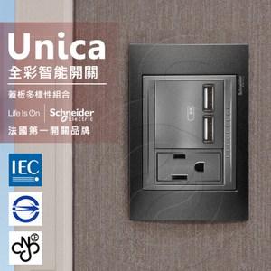 法國Schneider Unica Top雙USB插座/單插座金屬灰