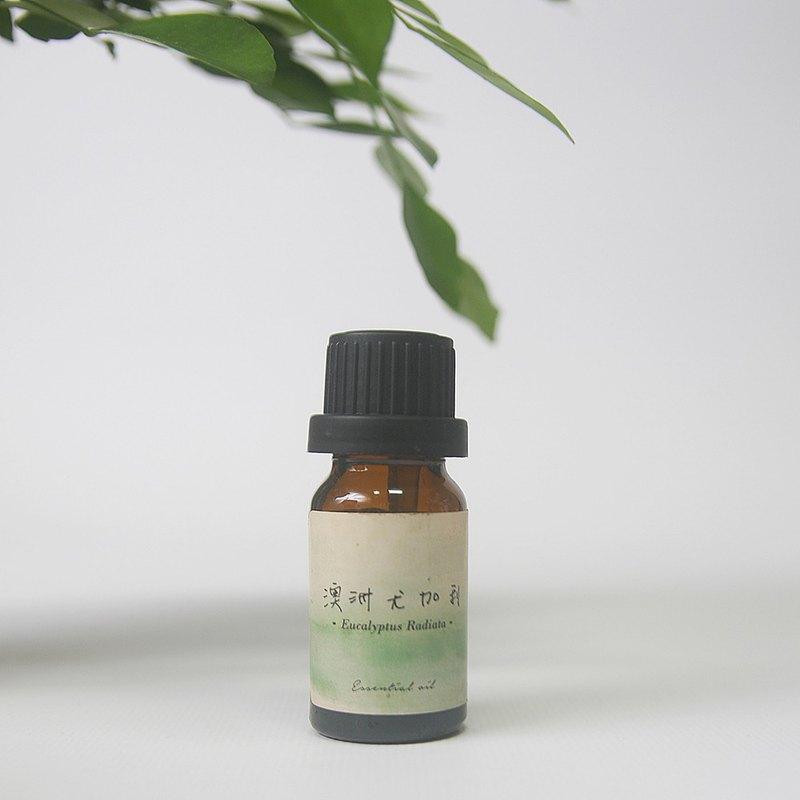 【迷迭香】Rosemary / 單方精油 12mL