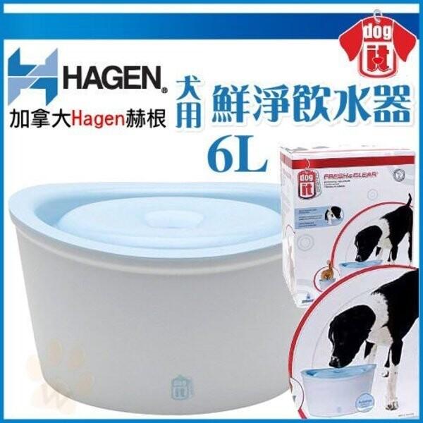 加拿大hagen赫根犬用-鮮淨飲水機循環設計超大容量-6l