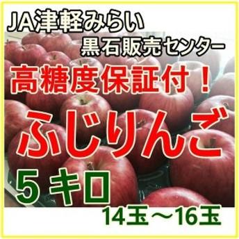 高糖度保証 樹上完熟  サンふじ 20玉化粧箱 5キロ箱 りんご 山形県産