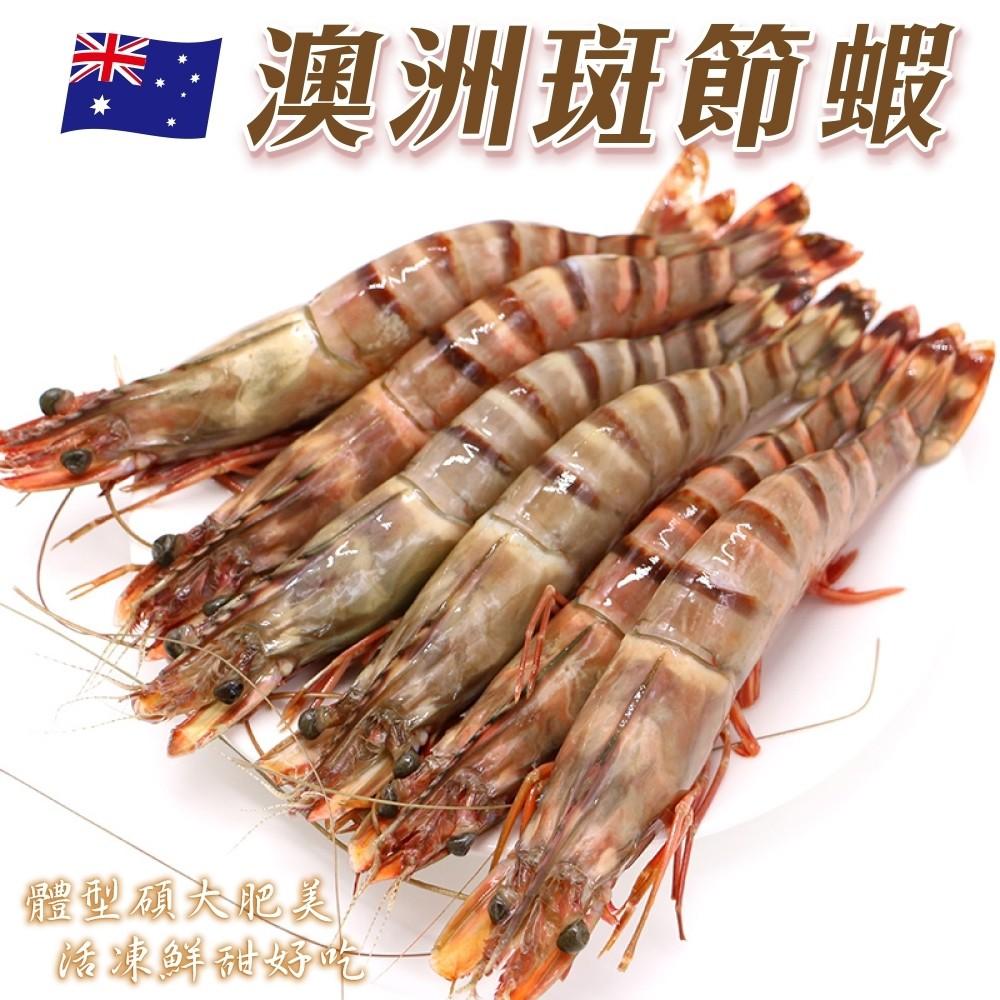 澳洲野生2XL斑節明蝦X1隻(每隻約90g±10% )【999免運】