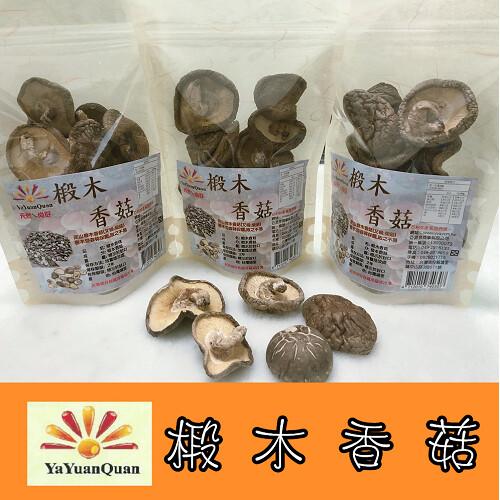 亞源泉埔里高山椴木香菇-大朵 80g (椴木香菇有柄捲彎形)